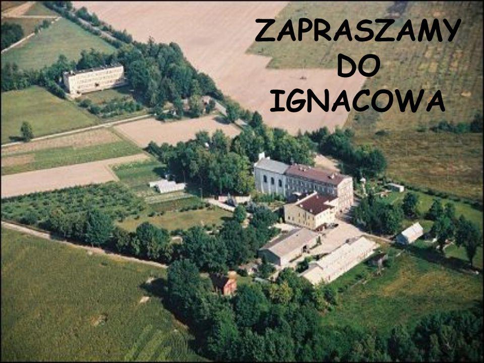 ZAPRASZAMY DO IGNACOWA