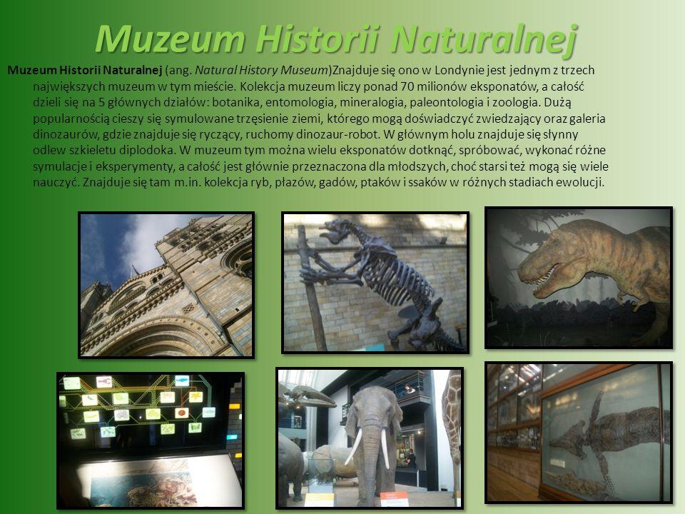 Muzeum Nauki Muzeum Nauki w Londynie (ang. Science Museum) – muzeum nauki i techniki. Prezentowano głównie dorobek przemysłu, górnictwa i rolnictwa, w