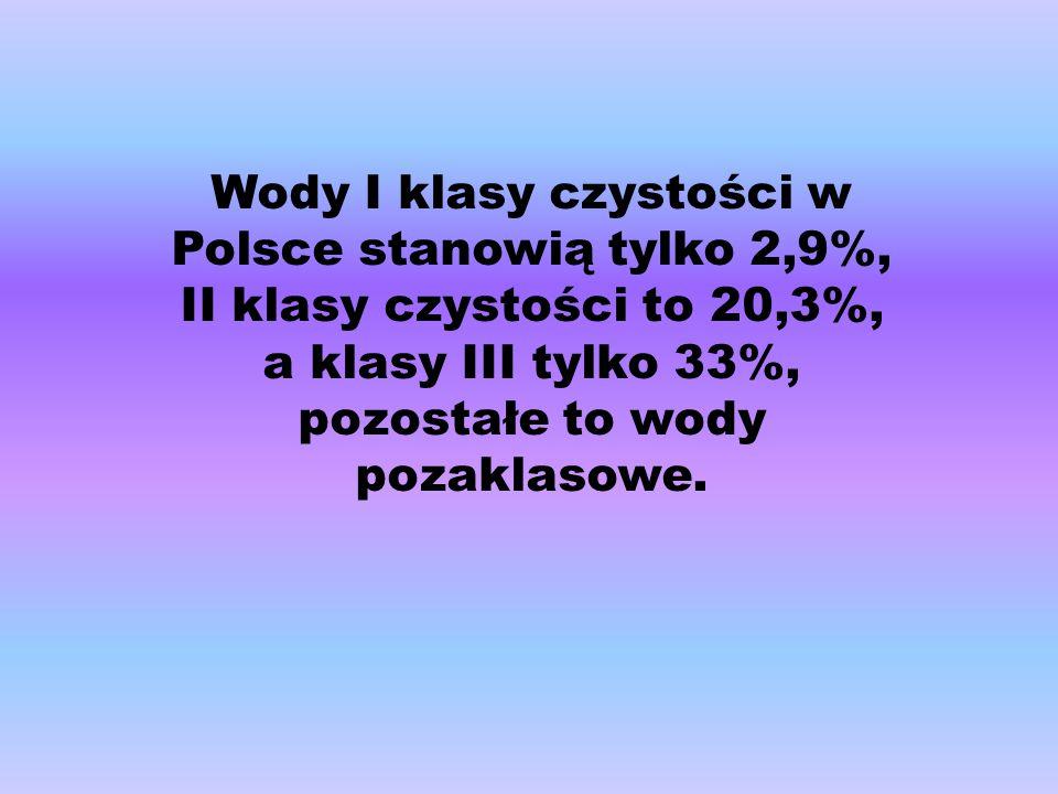 Wody I klasy czystości w Polsce stanowią tylko 2,9%, II klasy czystości to 20,3%, a klasy III tylko 33%, pozostałe to wody pozaklasowe.
