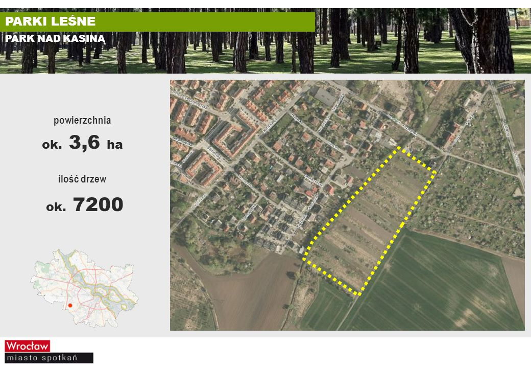 PARKI LEŚNE PARK NAD KASINĄ ilość drzew ok. 7200 powierzchnia ok. 3,6 ha