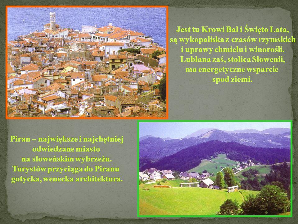 SŁOWENIA Powierzchnia: 20 253 km 2 Ludność: 1 970 570 Stolica: Lublana Język: słoweński Członek UE: 2004