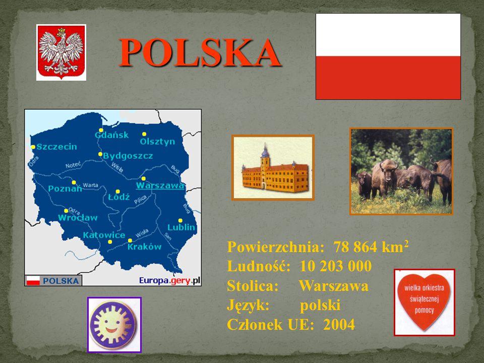 POLSKA A EUROPA Polska znajduje się w Europie Środkowej, nad Morzem Bałtyckim. Pod względem powierzchni zajmuje 63 miejsce w świecie i 9 w Europie.
