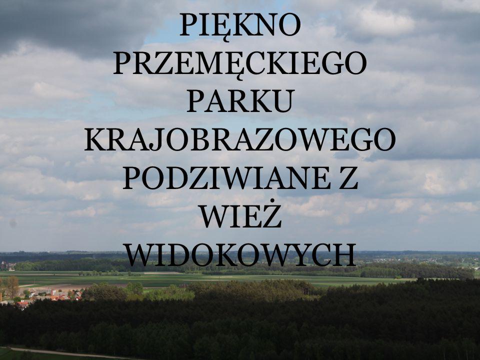 CEL WYCIECZKI Celem wycieczki jest zobaczenie fragmentu Przemęckiego Parku Krajobrazowego.