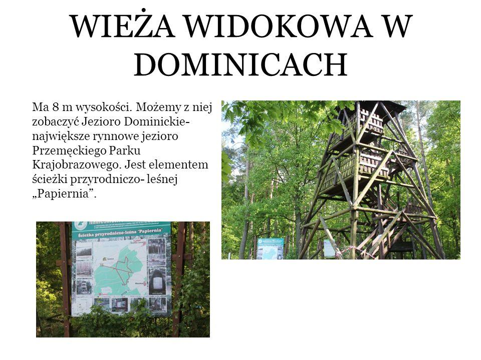 WIEŻA WIDOKOWA W DOMINICACH Ma 8 m wysokości. Możemy z niej zobaczyć Jezioro Dominickie- największe rynnowe jezioro Przemęckiego Parku Krajobrazowego.