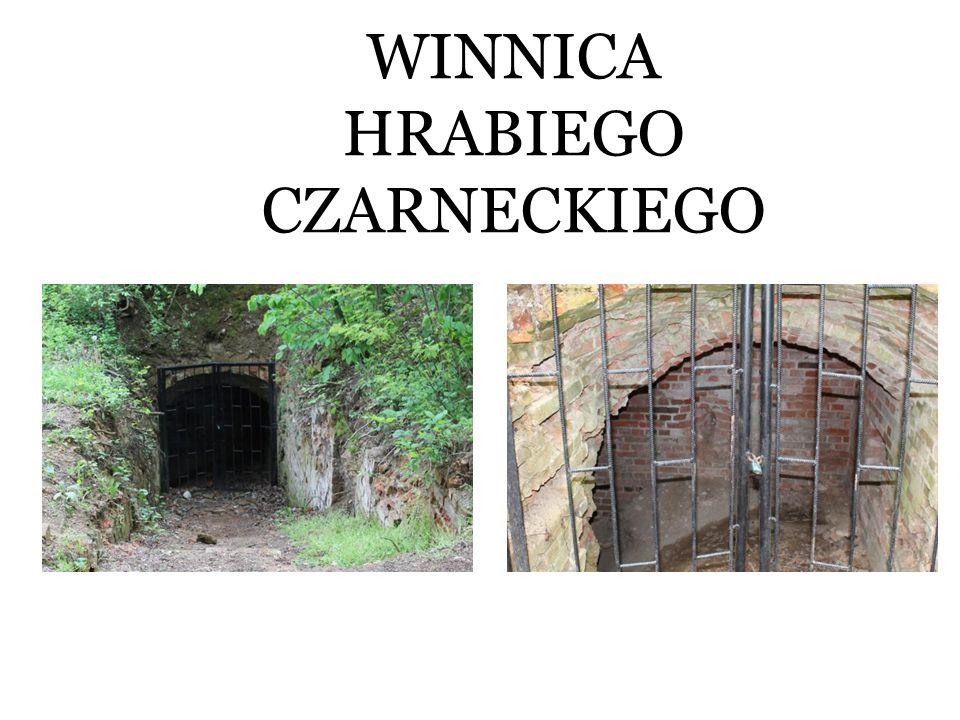 WINNICA HRABIEGO CZARNECKIEGO