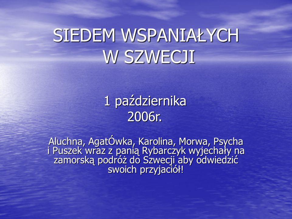 SIEDEM WSPANIAŁYCH W SZWECJI Aluchna, AgatÓwka, Karolina, Morwa, Psycha i Puszek wraz z panią Rybarczyk wyjechały na zamorską podróż do Szwecji aby odwiedzić swoich przyjaciół.
