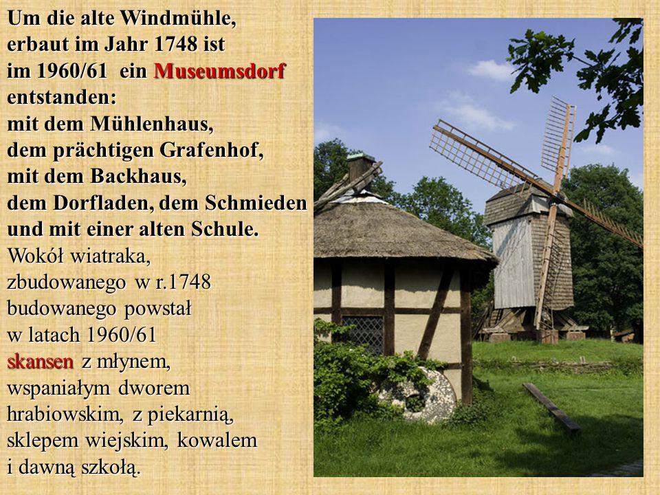 Um die alte Windmühle, erbaut im Jahr 1748 ist im 1960/61 ein Museumsdorf entstanden: mit dem Mühlenhaus, dem prächtigen Grafenhof, mit dem Backhaus, dem Dorfladen, dem Schmieden und mit einer alten Schule.