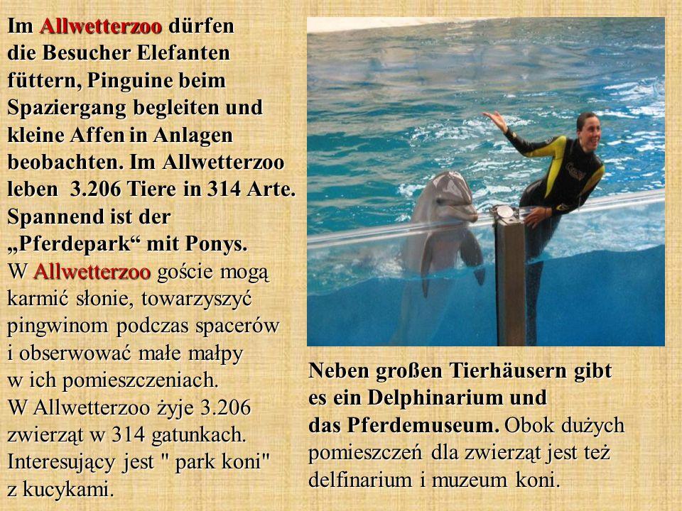 Neben großen Tierhäusern gibt es ein Delphinarium und das Pferdemuseum.