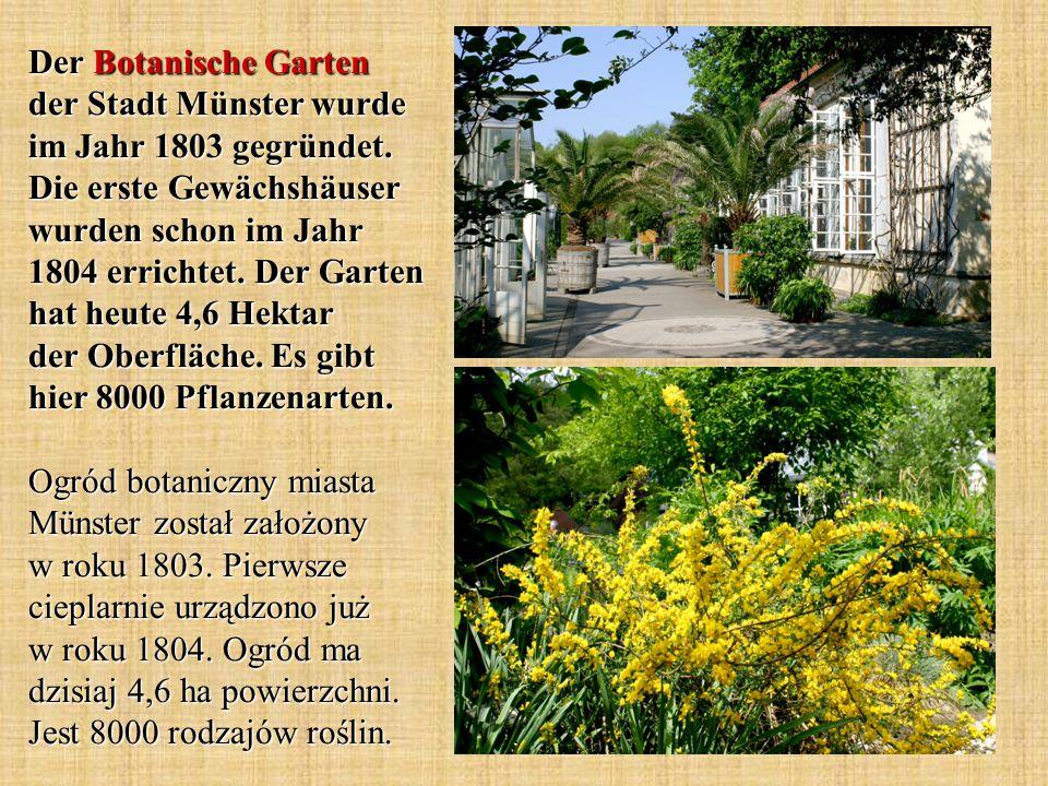 Der Botanische Garten der Stadt Münster wurde im Jahr 1803 gegründet.