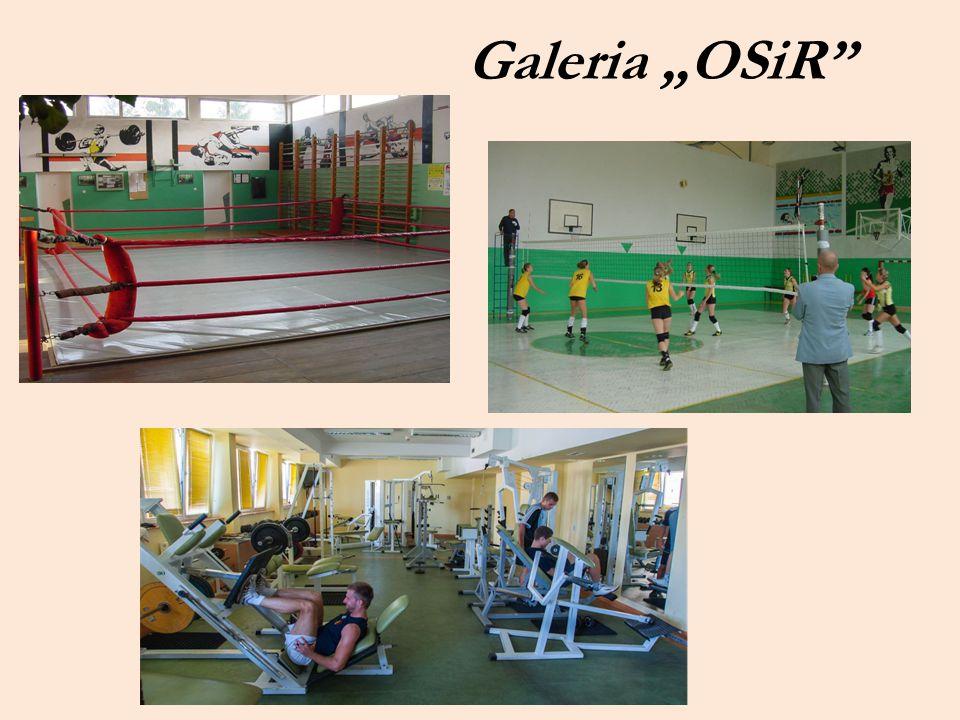 """Galeria """"OSiR"""""""