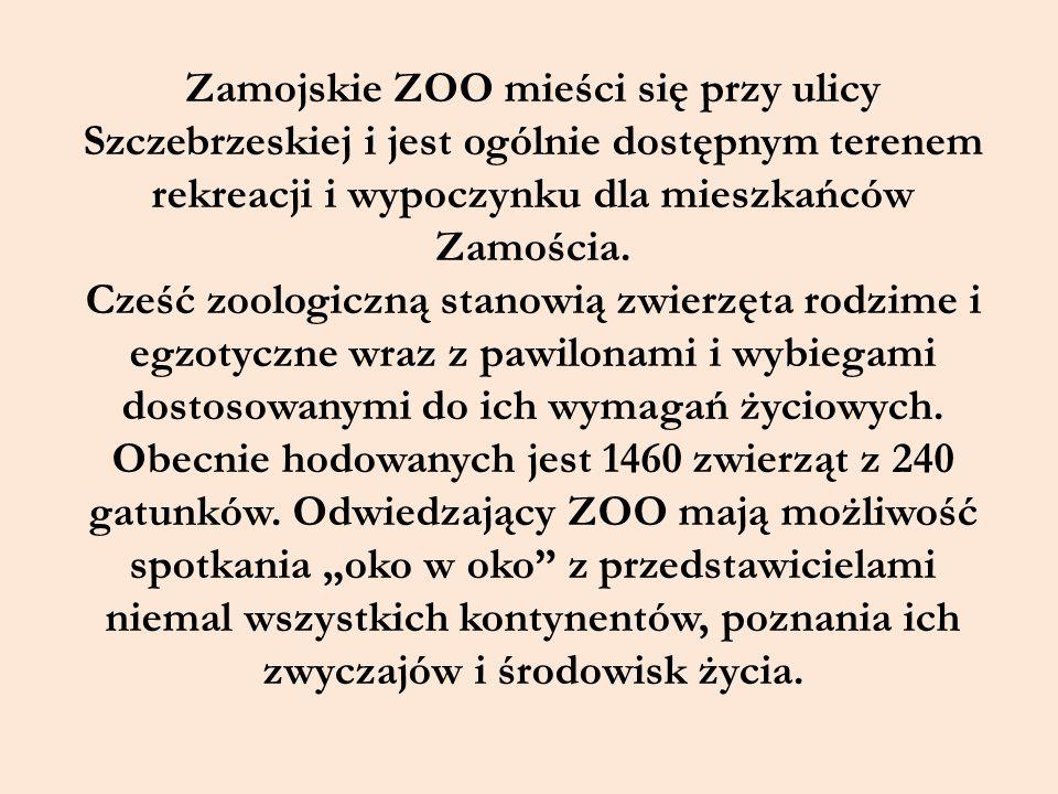 Zamojskie ZOO mieści się przy ulicy Szczebrzeskiej i jest ogólnie dostępnym terenem rekreacji i wypoczynku dla mieszkańców Zamościa. Cześć zoologiczną
