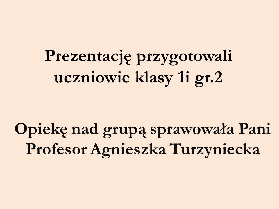Prezentację przygotowali uczniowie klasy 1i gr.2 Opiekę nad grupą sprawowała Pani Profesor Agnieszka Turzyniecka