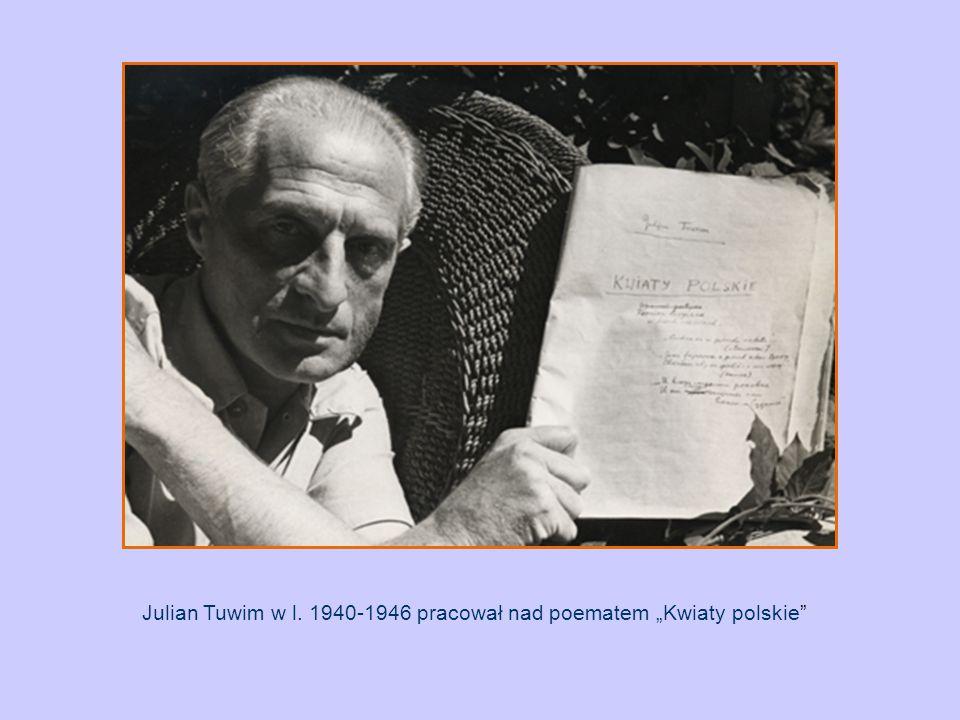 """Julian Tuwim w l. 1940-1946 pracował nad poematem """"Kwiaty polskie"""""""