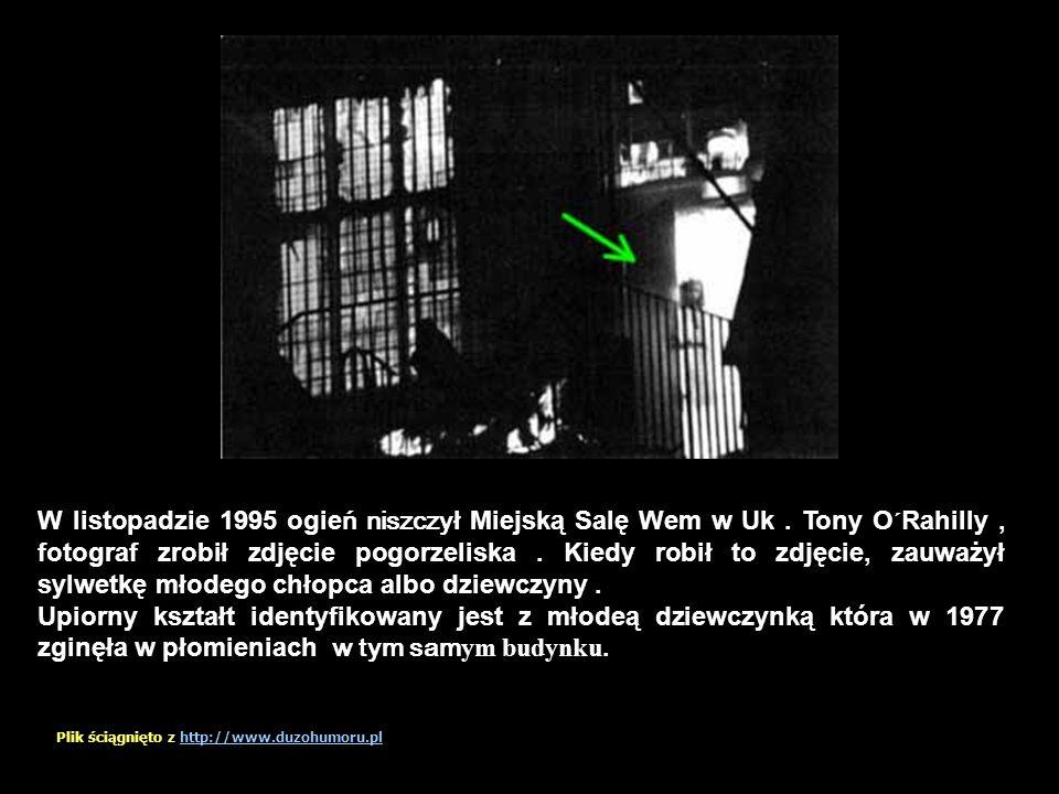 Zdjęcie zrobione przed ostatnią misją lotnika zaznaczonego na zdjęciu. Zginął w tym samym dniu! Plik ściągnięto z http://www.duzohumoru.plhttp://www.d
