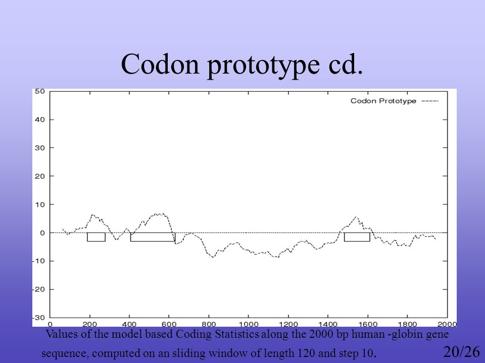 Codon prototype cd.