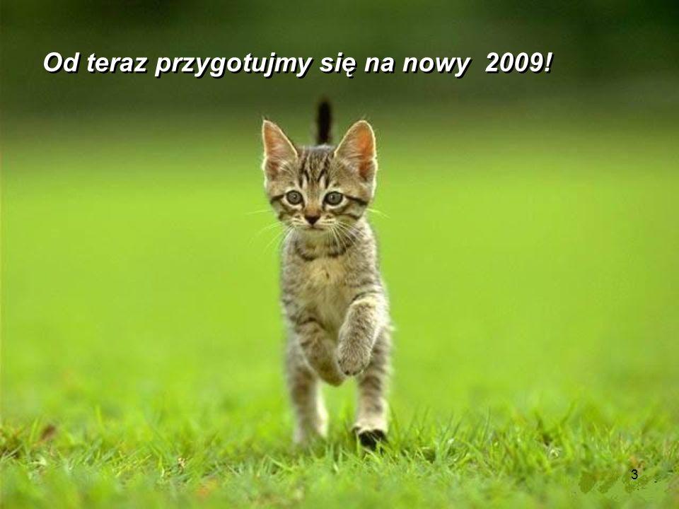 2 2007 minął bardzo szybko 2008 minął też bardzo szybko