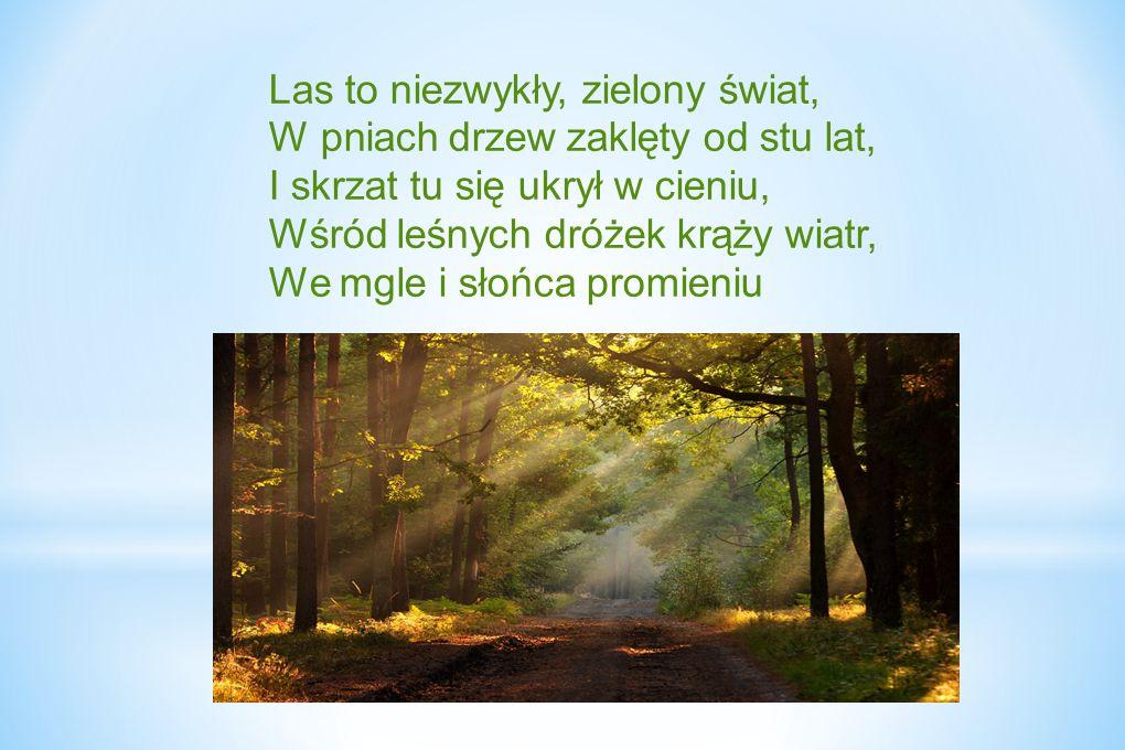 Las to niezwykły, zielony świat, W pniach drzew zaklęty od stu lat, I skrzat tu się ukrył w cieniu, Wśród leśnych dróżek krąży wiatr, We mgle i słońca