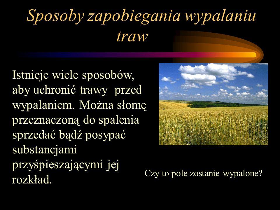 Skutki dla środowiska Wypalanie traw niszczy mikroorganizmy. Proces ten użyźnia glebę na krótki czas. Podczas wypalania traw do atmosfery dostaje się