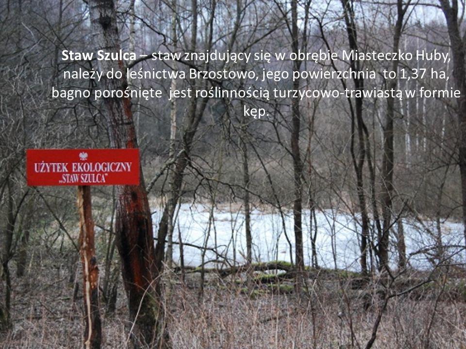 Staw Szulca – staw znajdujący się w obrębie Miasteczko Huby, należy do leśnictwa Brzostowo, jego powierzchnia to 1,37 ha, bagno porośnięte jest roślin
