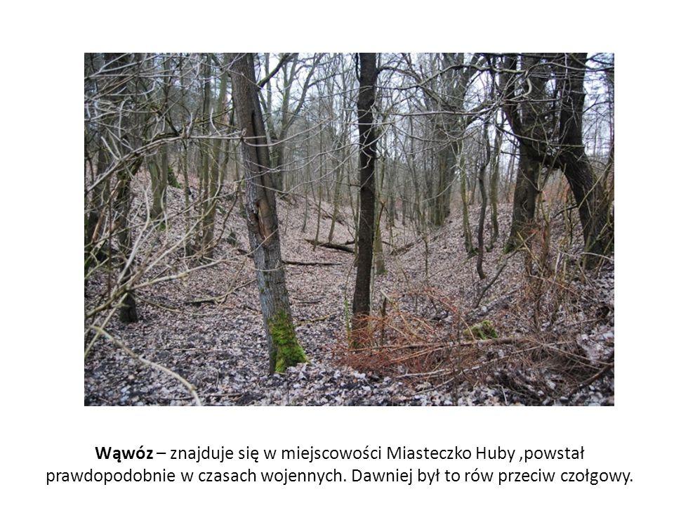 Wąwóz – znajduje się w miejscowości Miasteczko Huby,powstał prawdopodobnie w czasach wojennych. Dawniej był to rów przeciw czołgowy.