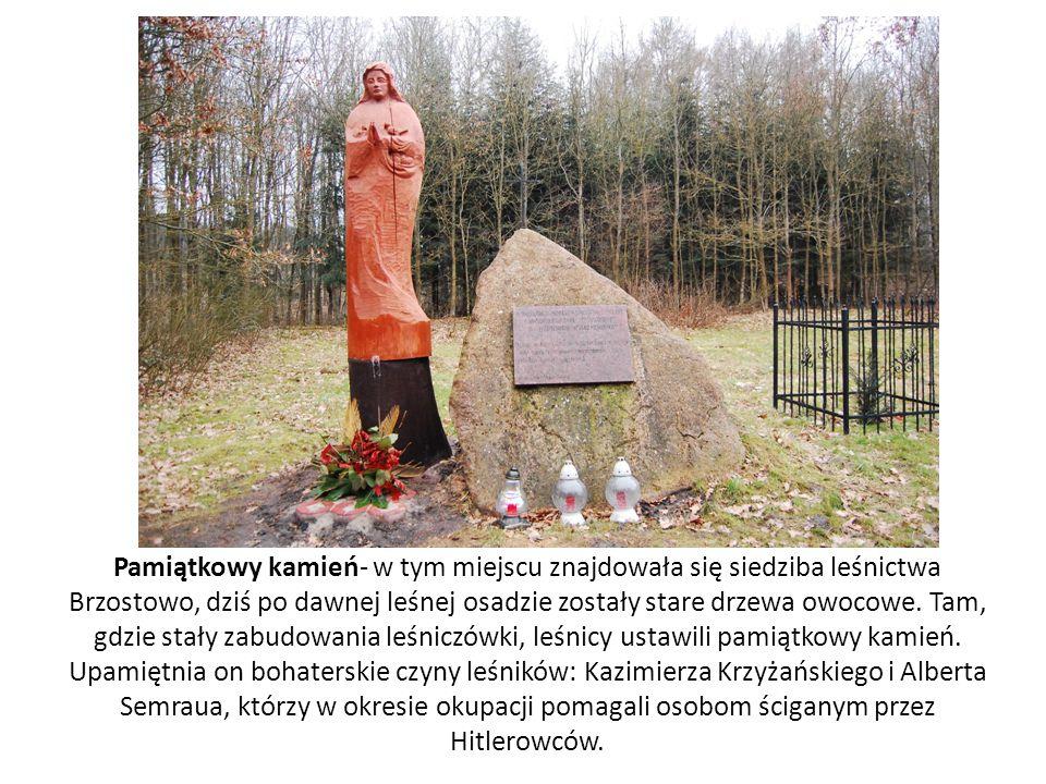 Pamiątkowy kamień- w tym miejscu znajdowała się siedziba leśnictwa Brzostowo, dziś po dawnej leśnej osadzie zostały stare drzewa owocowe. Tam, gdzie s