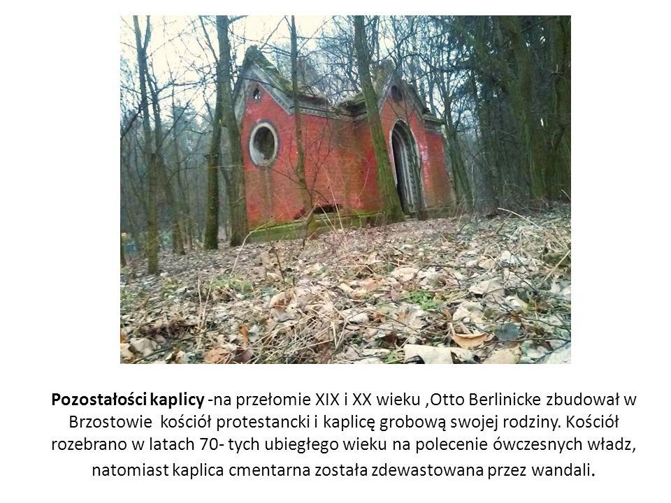 Pozostałości kaplicy -na przełomie XIX i XX wieku,Otto Berlinicke zbudował w Brzostowie kościół protestancki i kaplicę grobową swojej rodziny. Kościół