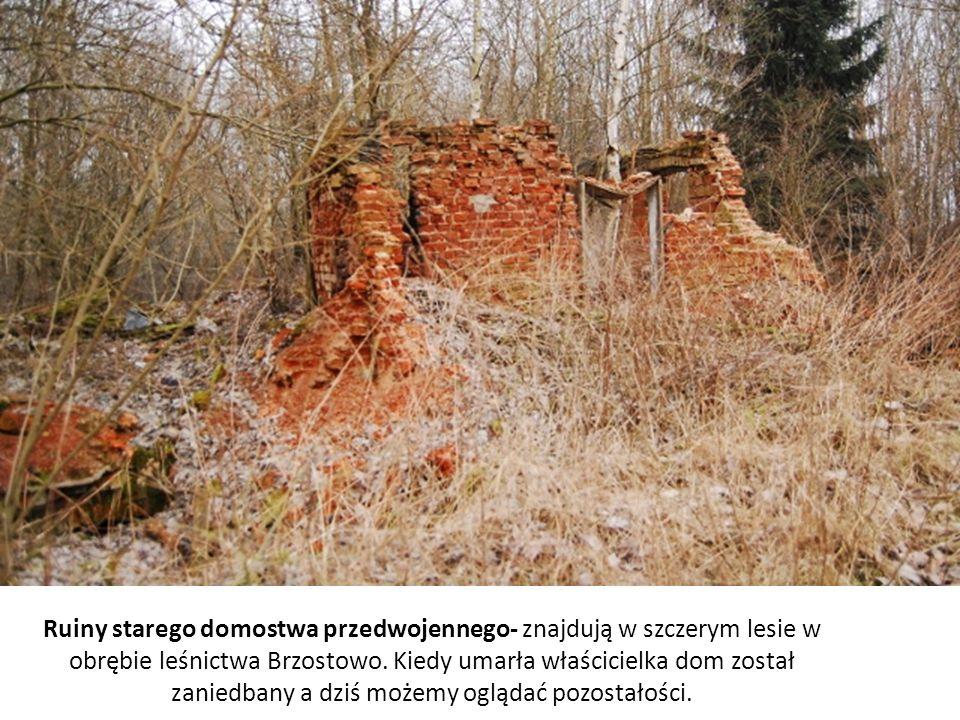 Ruiny starego domostwa przedwojennego- znajdują w szczerym lesie w obrębie leśnictwa Brzostowo. Kiedy umarła właścicielka dom został zaniedbany a dziś