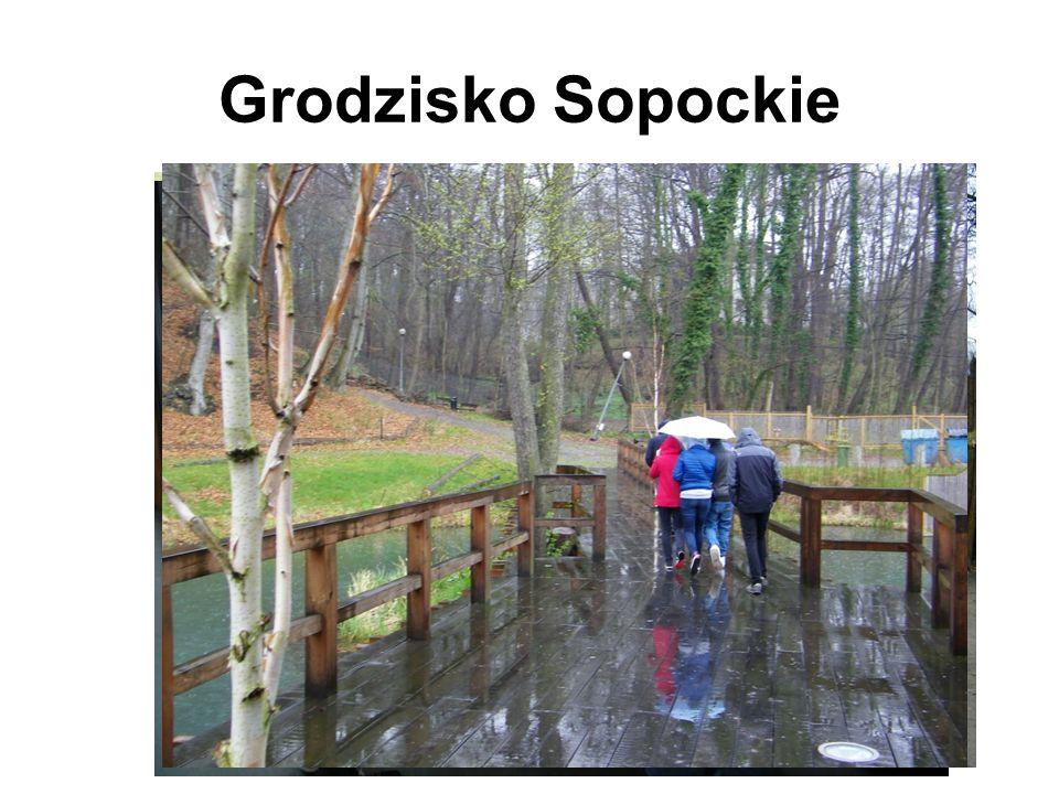 Grodzisko Sopockie