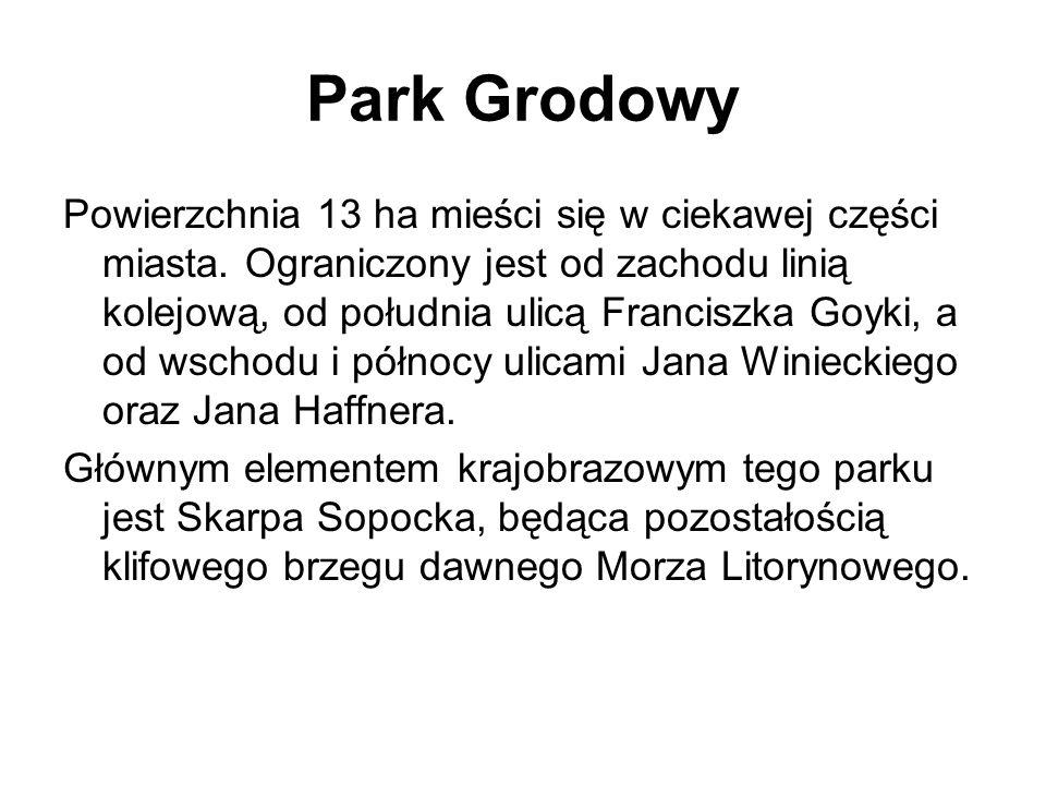 Park Grodowy Powierzchnia 13 ha mieści się w ciekawej części miasta. Ograniczony jest od zachodu linią kolejową, od południa ulicą Franciszka Goyki, a