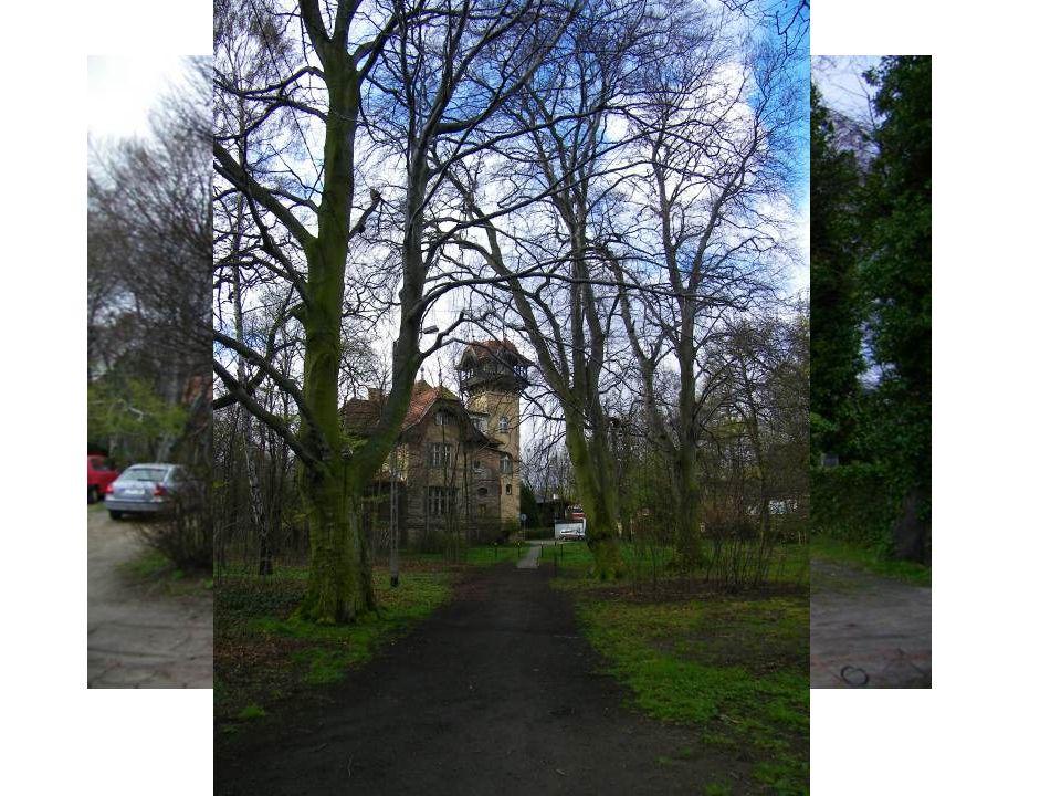 Grodzisko Sopockie wczesnośredniowieczne grodzisko w obrębie miasta Sopot, otoczone wałem i fosą, porośnięte bukowym lasem.