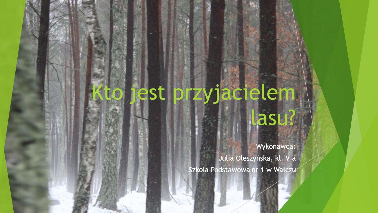 Kto jest przyjacielem lasu? Wykonawca: Julia Oleszyńska, kl. V a Szkoła Podstawowa nr 1 w Wałczu