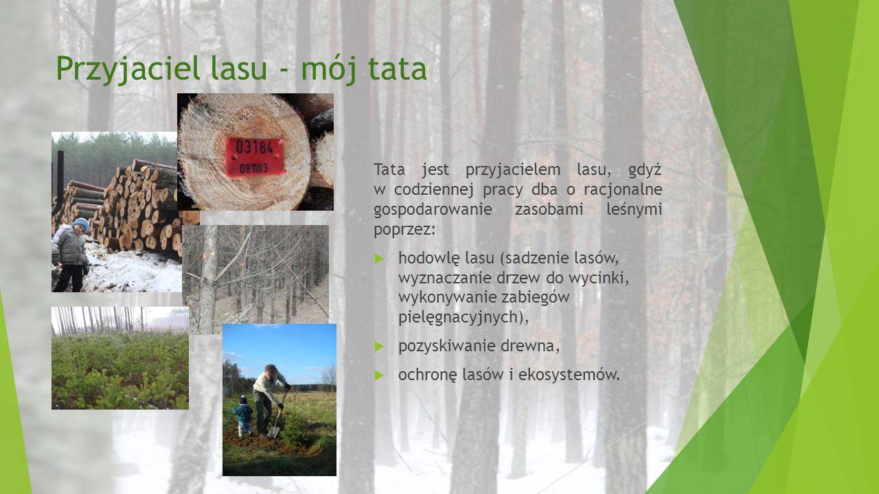 Przyjaciel lasu - mój tata Tata jest przyjacielem lasu, gdyż w codziennej pracy dba o racjonalne gospodarowanie zasobami leśnymi poprzez:  hodowlę la