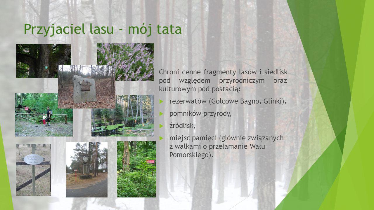 Przyjaciel lasu - mój tata Chroni cenne fragmenty lasów i siedlisk pod względem przyrodniczym oraz kulturowym pod postacią:  rezerwatów (Golcowe Bagn
