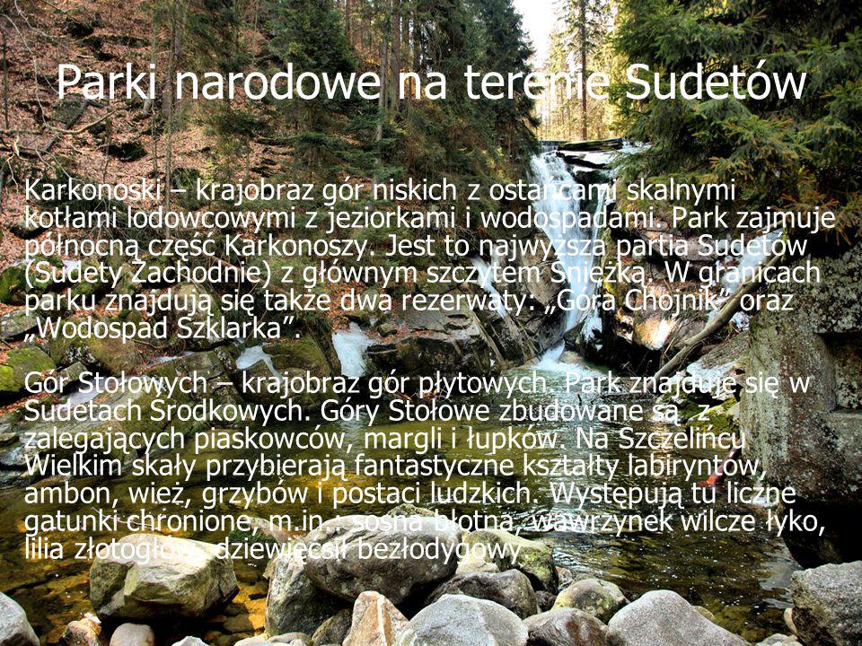 Parki narodowe na terenie Sudetów Karkonoski – krajobraz gór niskich z ostańcami skalnymi kotłami lodowcowymi z jeziorkami i wodospadami. Park zajmuje