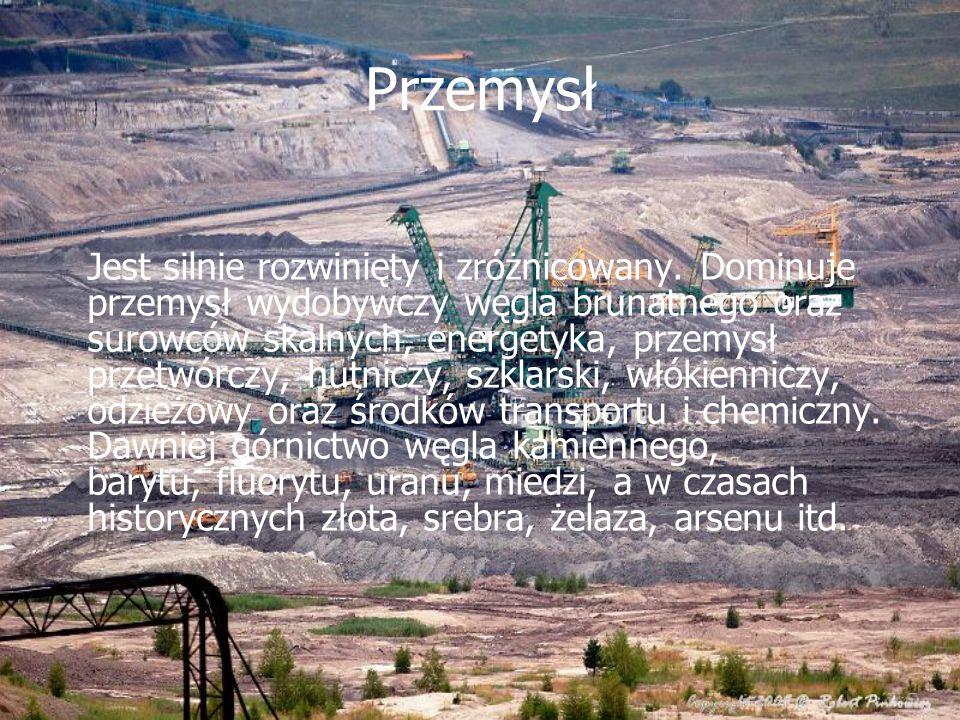 Przemysł Jest silnie rozwinięty i zróżnicowany. Dominuje przemysł wydobywczy węgla brunatnego oraz surowców skalnych, energetyka, przemysł przetwórczy