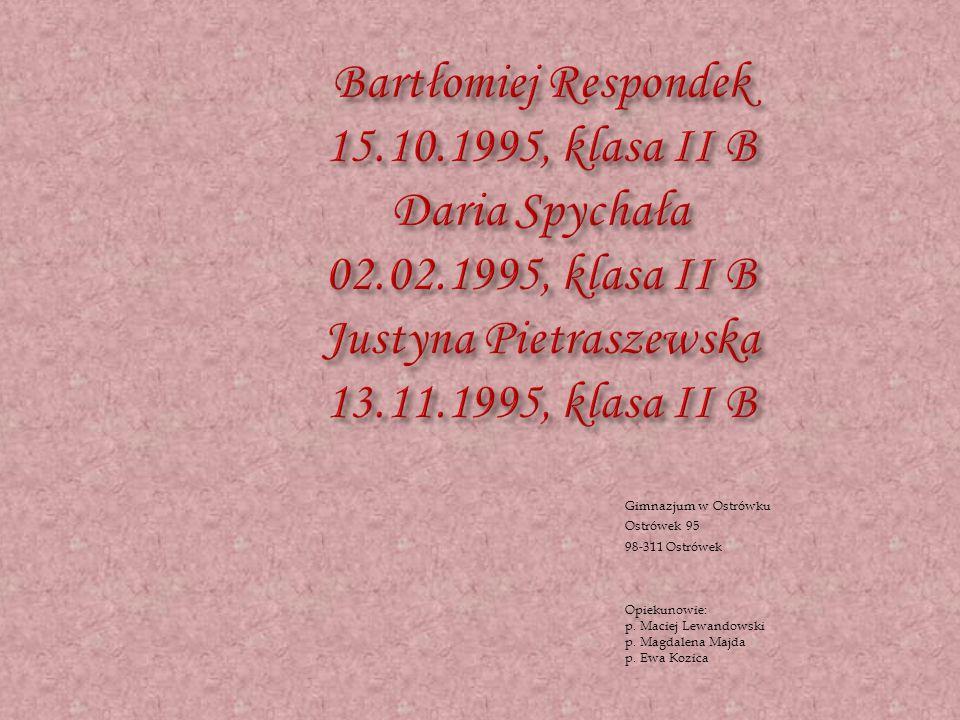 Gimnazjum w Ostrówku Ostrówek 95 98-311 Ostrówek Opiekunowie: p.