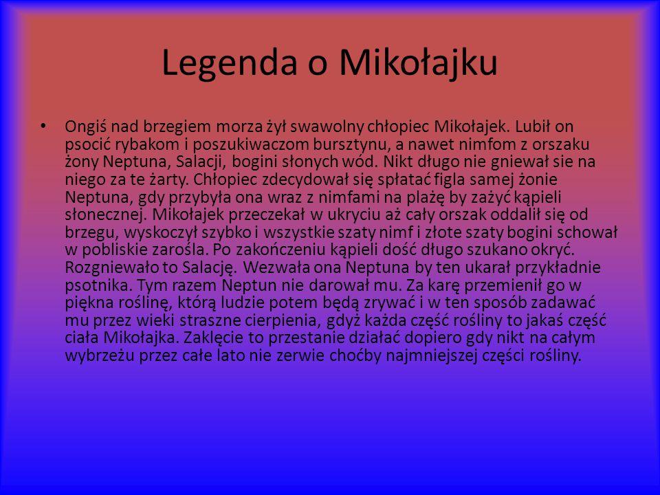Legenda o Mikołajku Ongiś nad brzegiem morza żył swawolny chłopiec Mikołajek.