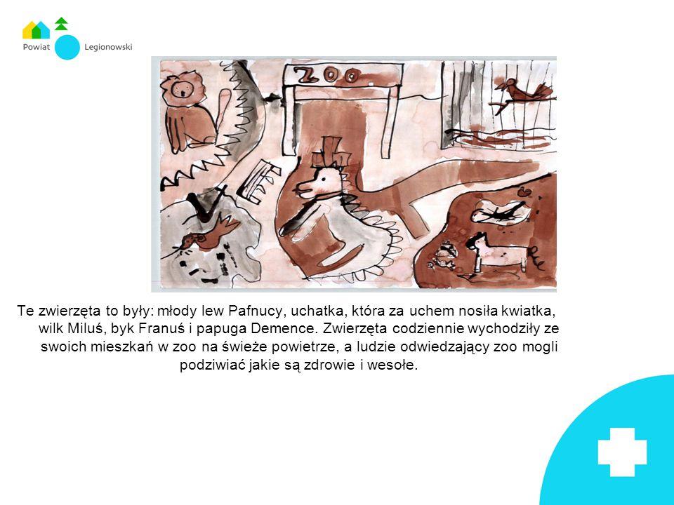 Te zwierzęta to były: młody lew Pafnucy, uchatka, która za uchem nosiła kwiatka, wilk Miluś, byk Franuś i papuga Demence.