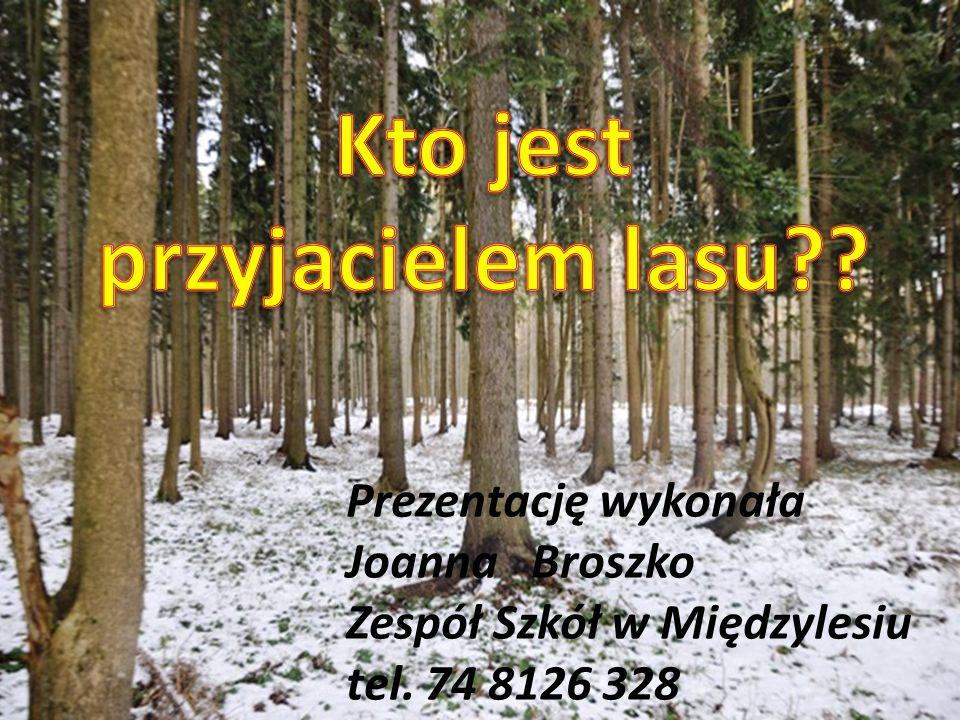 Prezentację wykonała Joanna Broszko Zespół Szkół w Międzylesiu tel. 74 8126 328