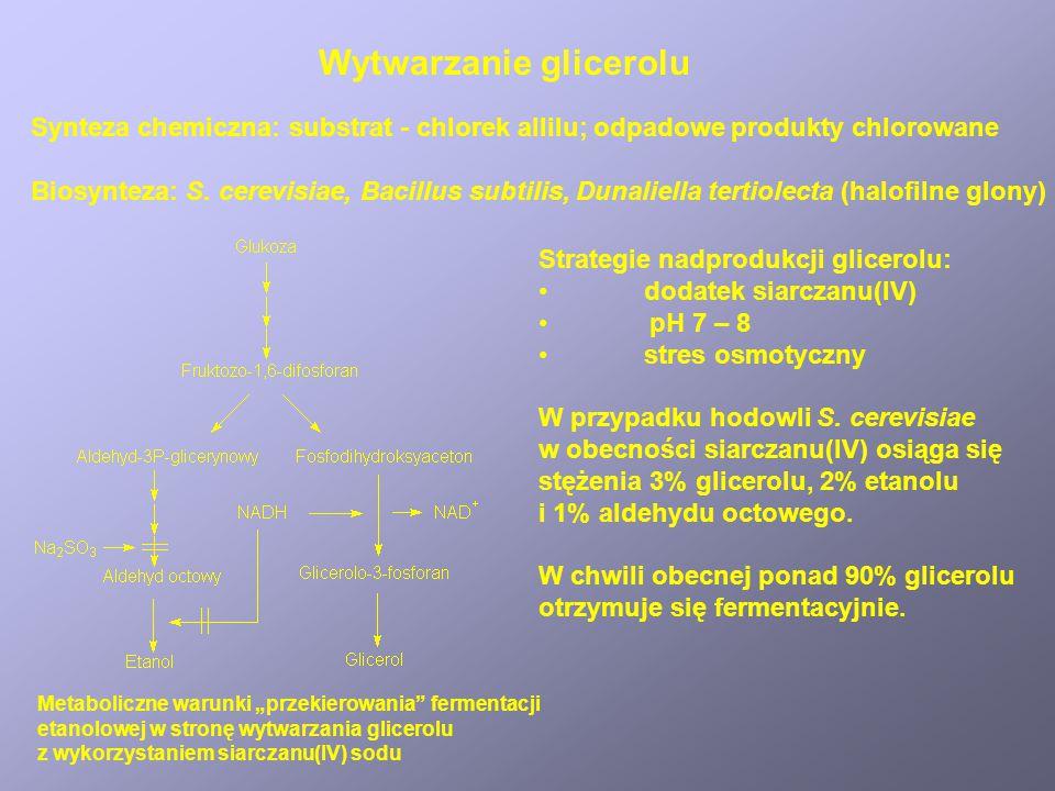SubstancjaDrobnoustrójZastosowanie Kwas octowy Aceton Butanol Glicerol Izopropanol 1,3-propandiol Kwas fumarowy Kwas mlekowy Kwas cytrynowy Acetobacte