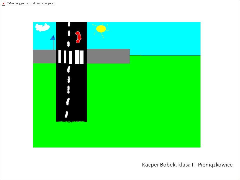 Kacper Bobek, klasa II- Pieniążkowice