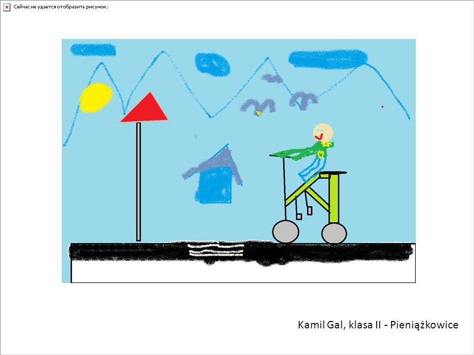 Kamil Gal, klasa II - Pieniążkowice
