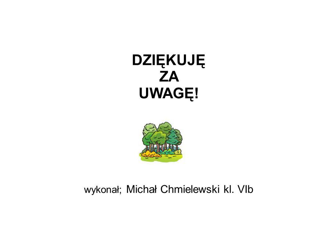 DZIĘKUJĘ ZA UWAGĘ! wykonał; Michał Chmielewski kl. VIb