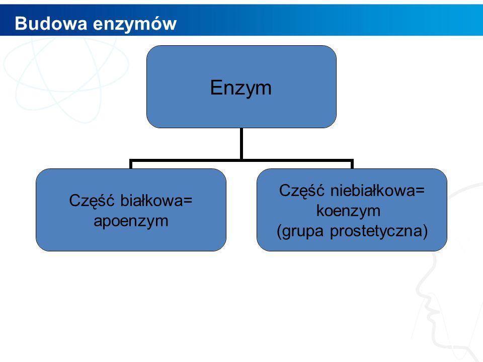 Budowa enzymów 5 Enzym Część białkowa= apoenzym Część niebiałkowa= koenzym (grupa prostetyczna)