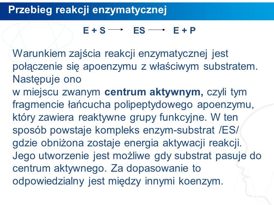 Przebieg reakcji enzymatycznej 6 E + S ES E + P Warunkiem zajścia reakcji enzymatycznej jest połączenie się apoenzymu z właściwym substratem. Następuj