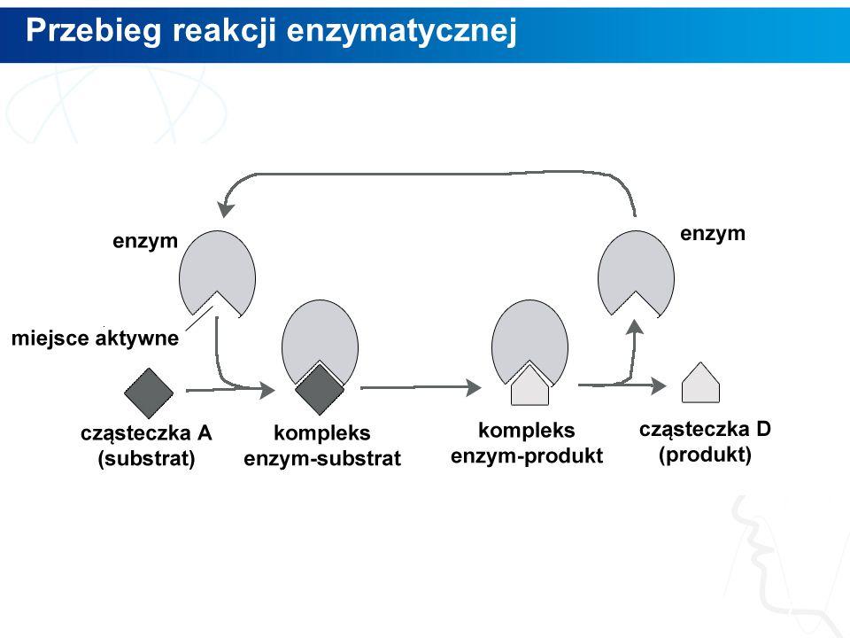 Przebieg reakcji enzymatycznej 7