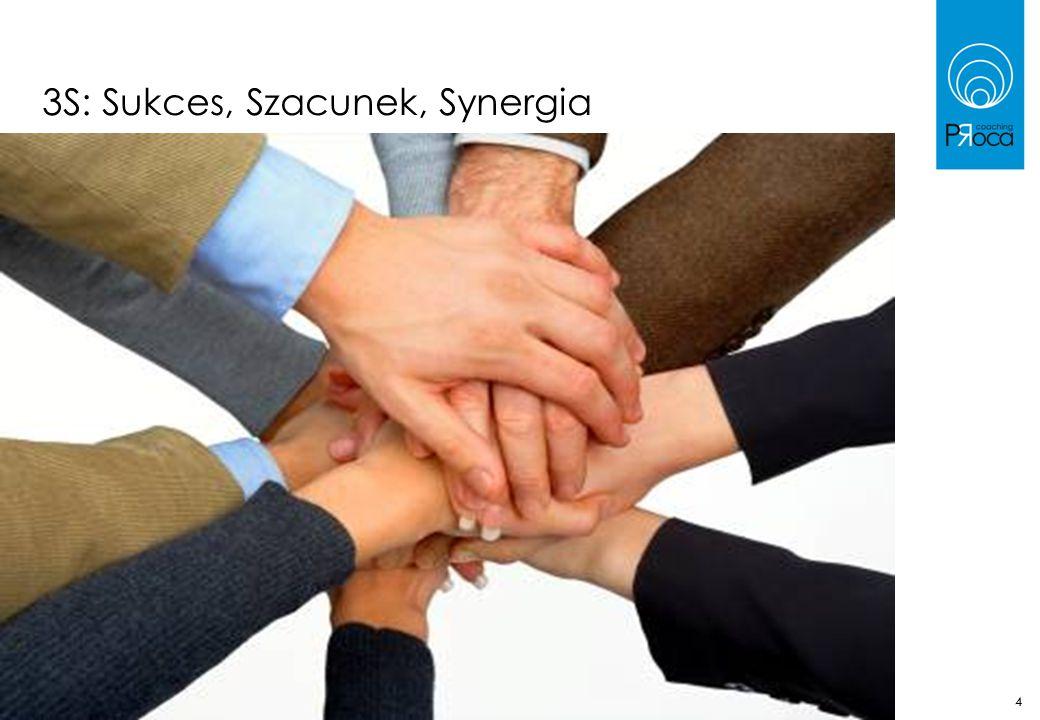 44 3S: Sukces, Szacunek, Synergia