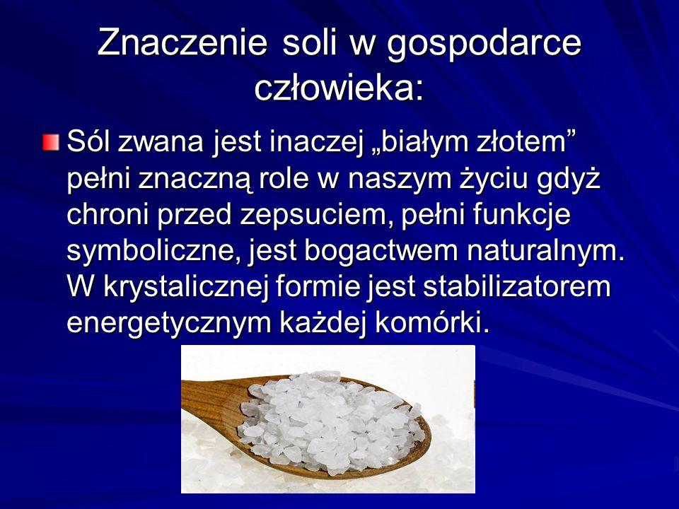 """Znaczenie soli w gospodarce człowieka: Sól zwana jest inaczej """"białym złotem"""" pełni znaczną role w naszym życiu gdyż chroni przed zepsuciem, pełni fun"""