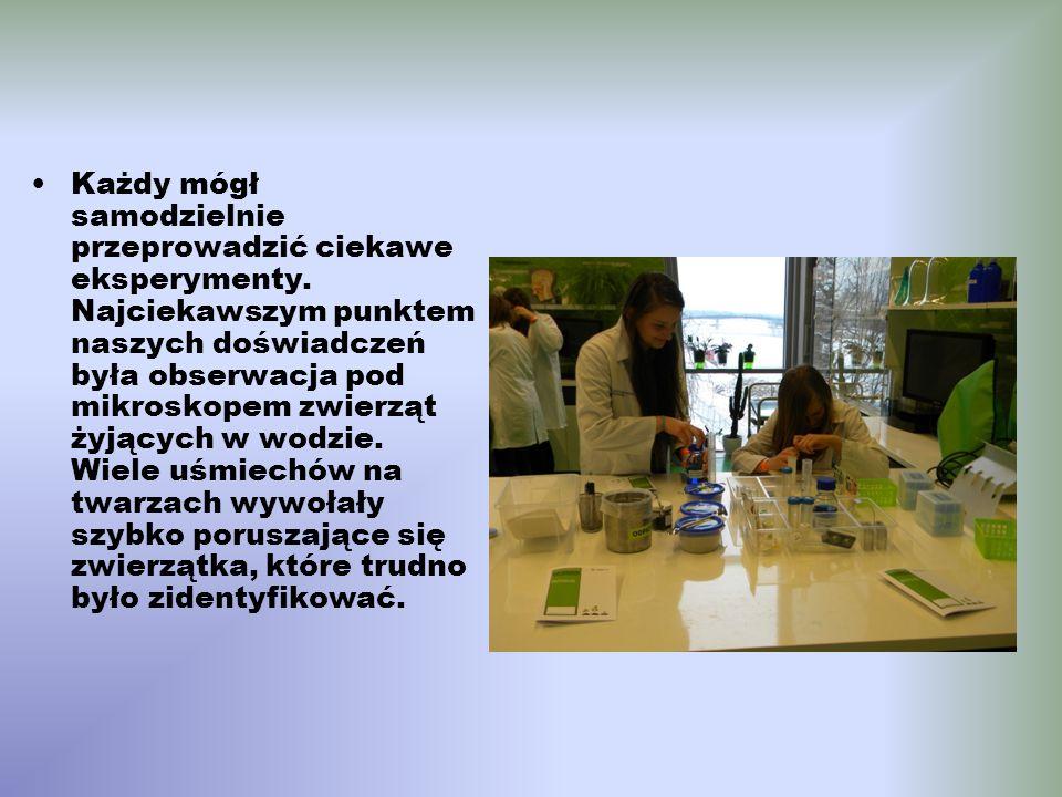 Każdy mógł samodzielnie przeprowadzić ciekawe eksperymenty. Najciekawszym punktem naszych doświadczeń była obserwacja pod mikroskopem zwierząt żyjącyc