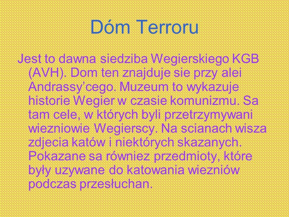 Dóm Terroru Jest to dawna siedziba Wegierskiego KGB (AVH). Dom ten znajduje sie przy alei Andrassy'cego. Muzeum to wykazuje historie Wegier w czasie k